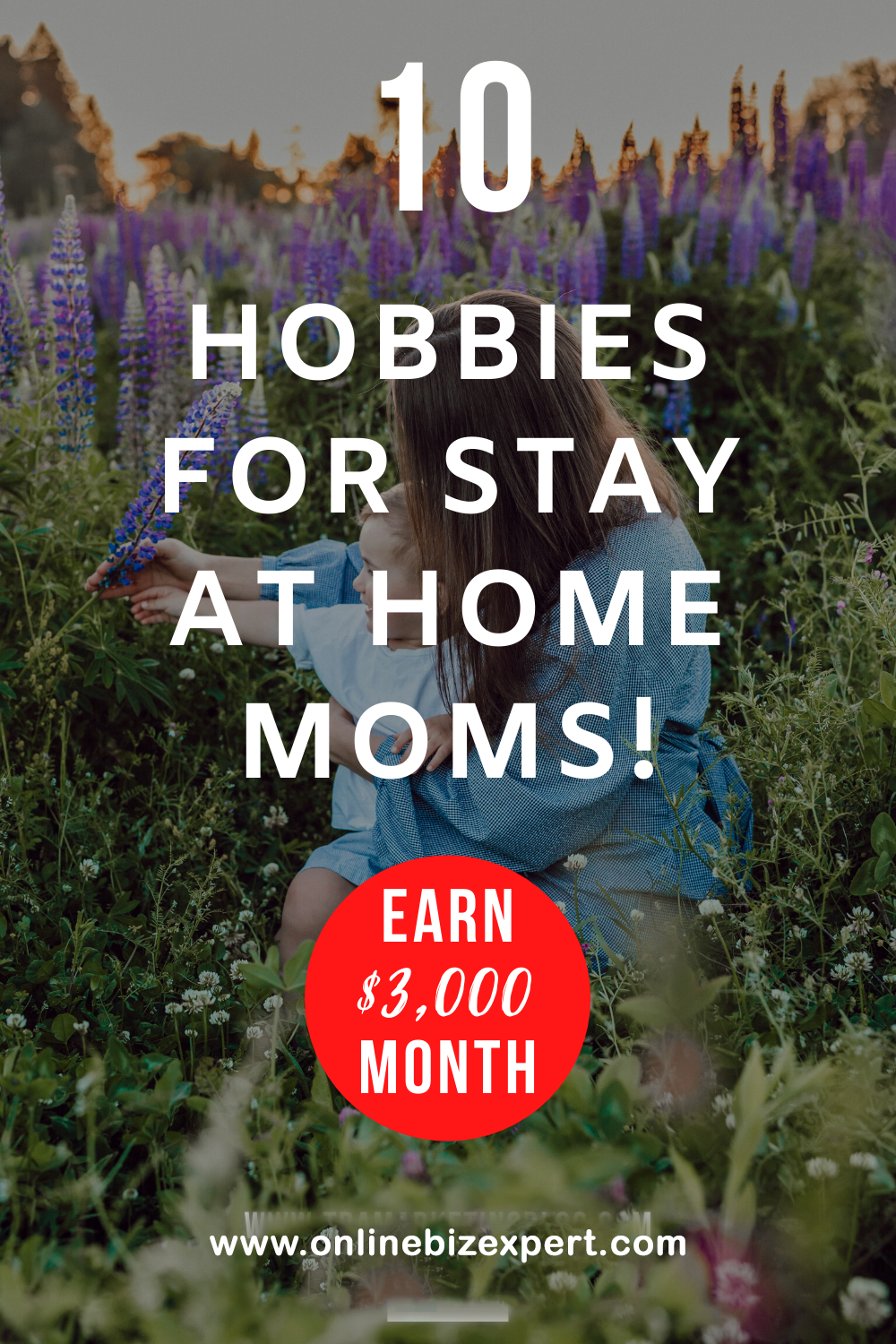 10 WELL PAYING HOBBIES IDEA FOR HOME STAYING MOMS